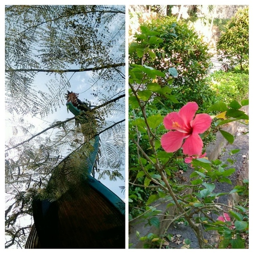 20191224_001953-COLLAGE